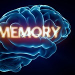 6 Ways To Improve Your Memory
